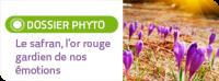 En cas de stress ou surmenage, Salvia, spécialisée dans les compléments alimentaires naturels à base d'huiles essentielles bio, vous propose des synergies prêtes à l'emploi contenant des extraits de safran bon pour l'équilibre émotionnel