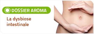 Salvia est spécialiste des compléments alimentaires naturels à base de plantes. Sa gamme sphère digestive permet de rééquilibrer le système intestinal notamment en cas de dysbiose intestinale.