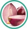 Le laboratoire Salvia, spécialiste des compléments alimentaires, utilise l'huile essentielle d'oignon pour ses effets sur la régulation de la glycémie et le maintien d'une cholestérolémie normale