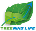 Logo du blog Treening Life